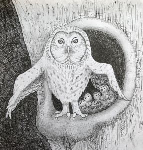 Owl with babies